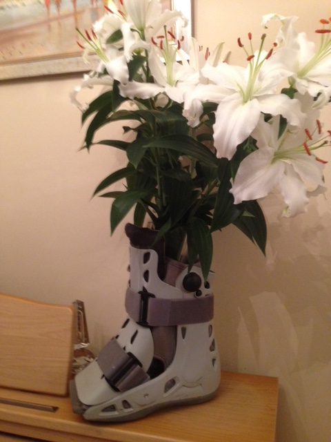 Another use for my boot | A Tree of Life Sciences Ltd